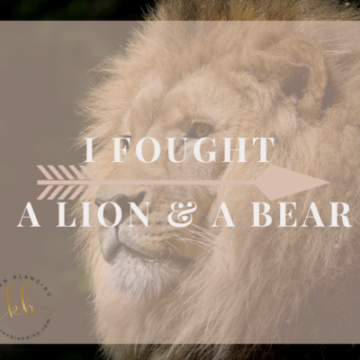 I Fought a Lion & a Bear